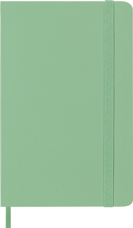 Classic Planner 12M DAILY PK ICE GREEN SOFT