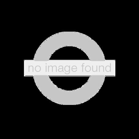 CLASSIC PRO CLICK BALLPEN 1.0 SLV.GREY No Image